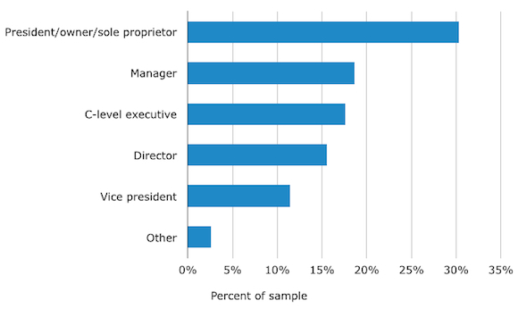 Demographics: Buyers by Job Title