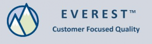 Logo di Everest