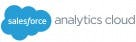 TrueERP vs. Salesforce Analytics Cloud