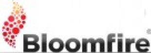 Pimcore rispetto a Bloomfire