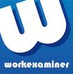 Work Examiner