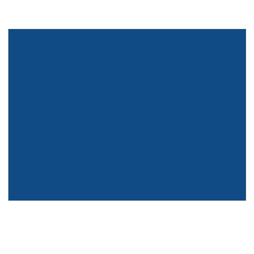 Logotipo do LS Retail