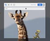 Enonic XP image management