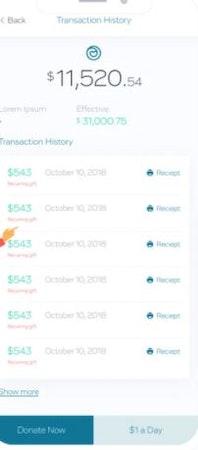 Charidy transaction history