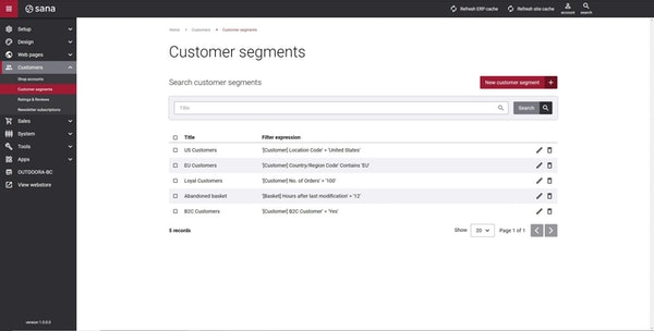 Sana Commerce customer segments