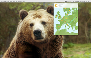 TunnelBear - Tunnelbear for Mac