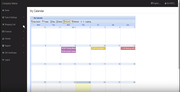 INS Affordable MLM Software calendar