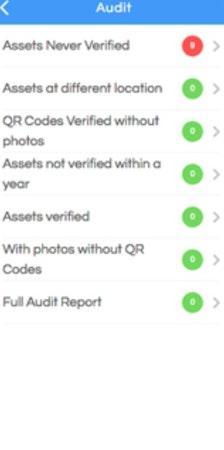 Assetize.it audit assets