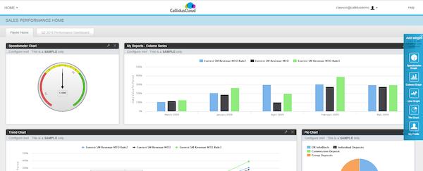CallidusCloud sales performance