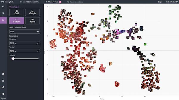 Zegami oesophogal cancer video frame clustering