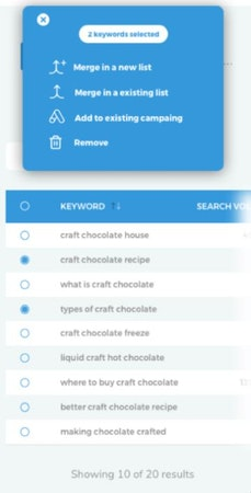 Clever Ads Keyword Planner results