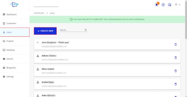 Cloudalize add new users