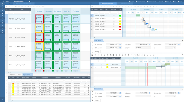 CyberPlan WBS display screenshot