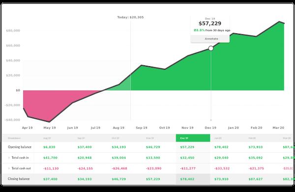 Cash Flow Frog daily cash flow