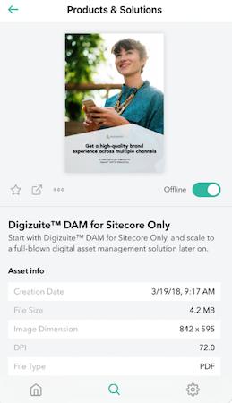 Digizuite asset info