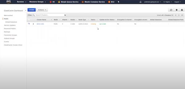 Amazon ElastiCache cluster details