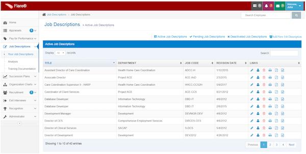 FlareTM job descriptions screenshot