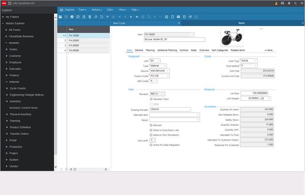Infor CloudSuite Industrial (SyteLine) item detail