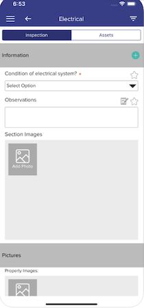 Link Inspect Pro inspection details