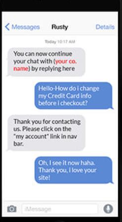 Live Support chat screenshot