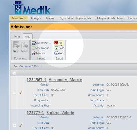 Medik Online export data