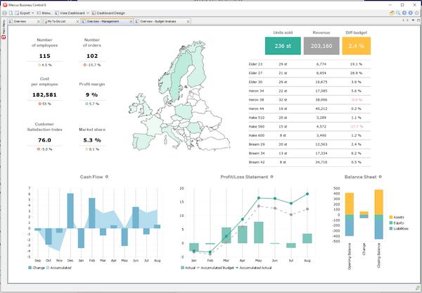 Mercur Business Control management overview