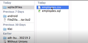 SQLite file formats