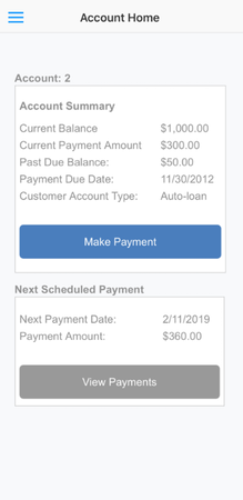 PaymentVision account details