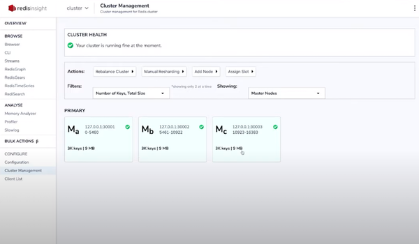 Redis Enterprise cluster management
