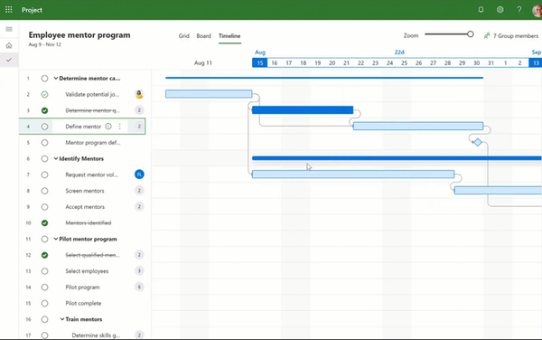 Microsoft Project manage projects