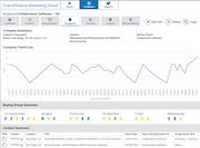 InsightBase company summary