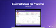 Essential Studio for Winforms