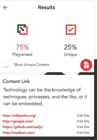 Plagiarism Detector results
