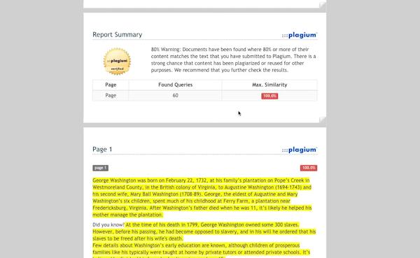 Plagium downloadable report
