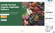 WordPress customizable website