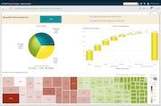 SAS Visual Analytics - Interactive reporting