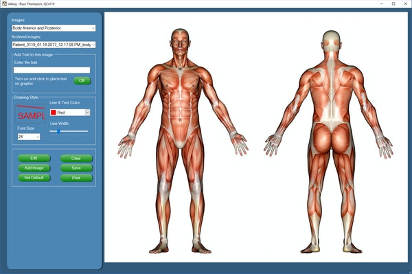 Quick Charts Complete - Body graphic