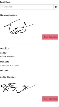 Digital signature capture