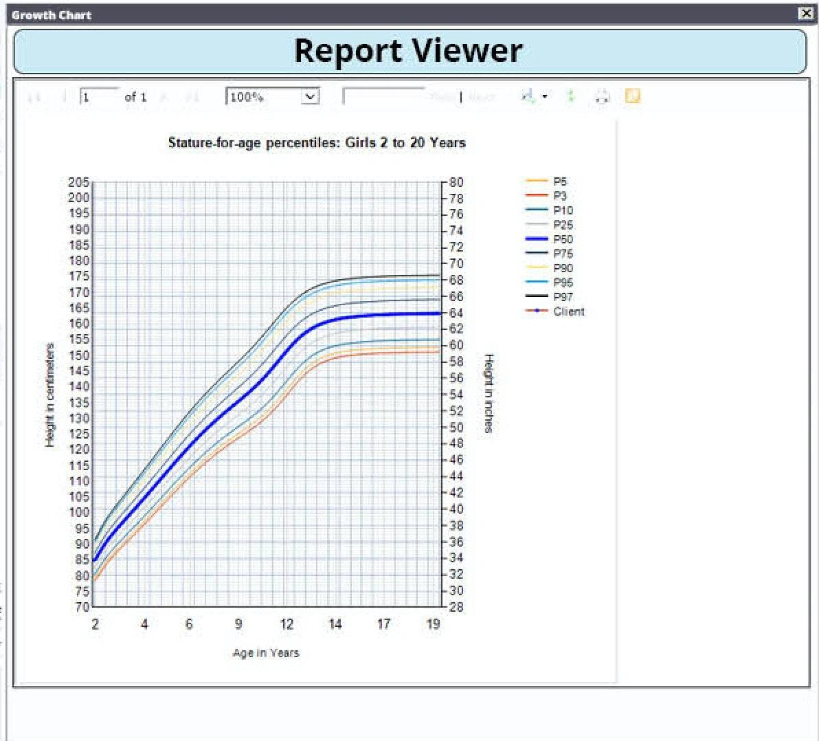 Report viewer