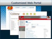 Customized web portal