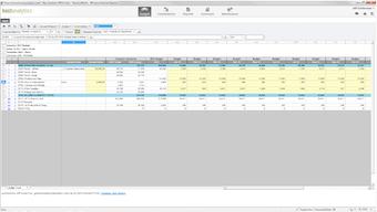 Budget input template