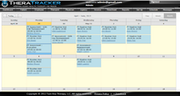 Manage therapist schedules