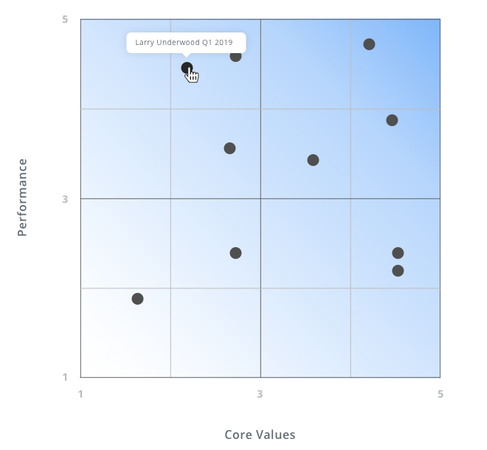 Performance Values Matrix