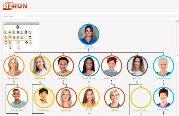 Org chart interface
