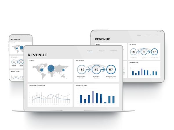 TARGIT Decision Suite revenue overview