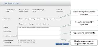 Batch production record details