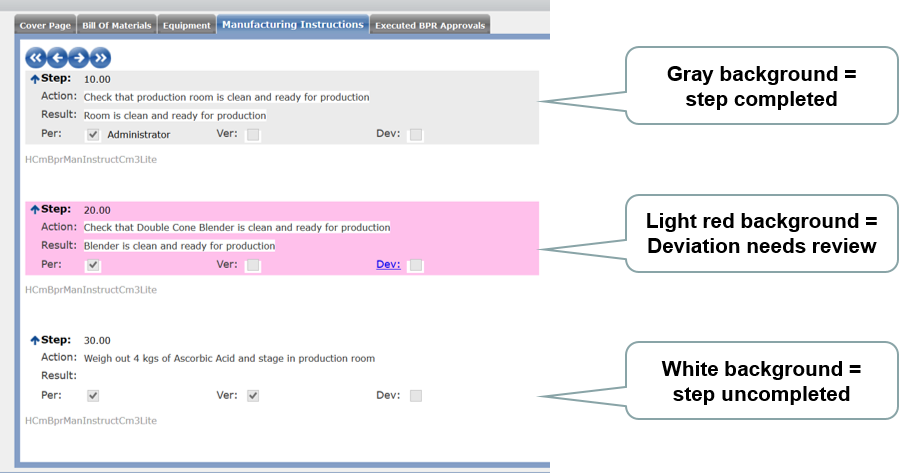 Batch production record summary steps