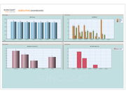Suncoast executive dashboard
