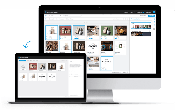 Sharelink and Brand Portal in WoodWing Assets