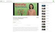 BizLibrary - Diversity video lesson